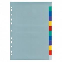 Divisori 12 spazi colorati plastica